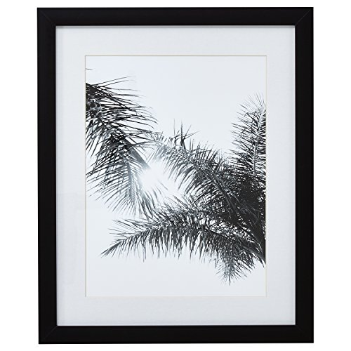 Stone & Beam Modern Black and White Palm Branches Photo, Black Frame, 18'' x 22'' by Stone & Beam