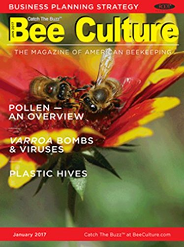 : Bee Culture