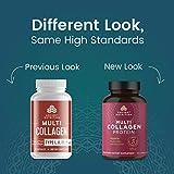 Multi Collagen Capsules, Collagen Types