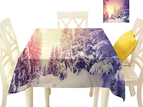 cobeDecor Elegance Engineered Tablecloth Dramatic Wintry Scene Idyllic Landscape with Rising Sun Natural Park Retro Effect W54 x L54, Waterproof/Oil-Proof/Spill-Proof Tabletop Protector