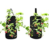 Hanging Aeration Strawberry Planter for Strawberry Bare Root Plants (Roots not Included) Felt Material 2 Pack | Hooks Included