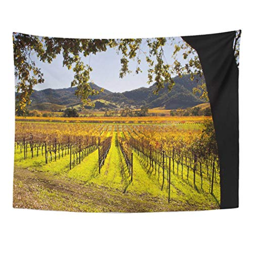 Emvency Wall Tapestry Colorful Vineyard Napa Valley in Autumn Green California Sonoma Fall Grapes Landscape Agriculture Field Decor Wall Hanging Picnic Bedsheet Blanket 80x60 Inches ()