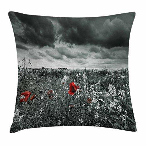 Red and Black Throw Pillow Cushion Cover by Ambesonne, Poppy Field Spring Time Flower Grass Open Sky Photo, Decorative Square Accent Pillow Case, 16 X 16 Inches, White Charcoal Grey (Red Easter Grass)