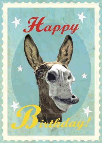 Happy Birthday Donkey Greeting Card By Max Hernn Amazon
