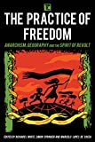 img - for The Practice of Freedom: Anarchism, Geography, and the Spirit of Revolt (Transforming Capitalism) book / textbook / text book