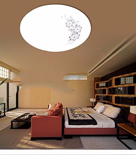 LighSCH Plafonnier La simplicité moderne acrylique Led Impression Circulaire de chambre à la salle de séjour,24 W diamètre40cm optiques accordables