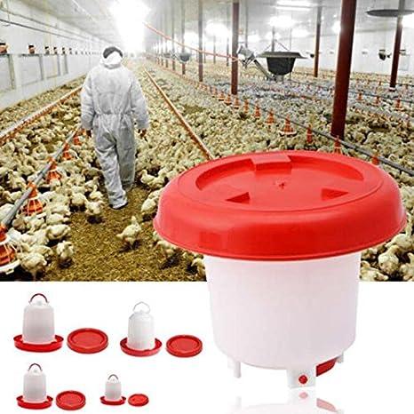 alimentador de pl/ástico para Pollos codornices Patos,1.5kg ZDJR Alimentador de Aves de Corral