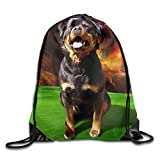 Unisex Drawstring Bags Dog Rottweiler Puppy Fun Portable Backpack Travel Sport Gym Bag Yoga Runner Daypack Shoe Bags
