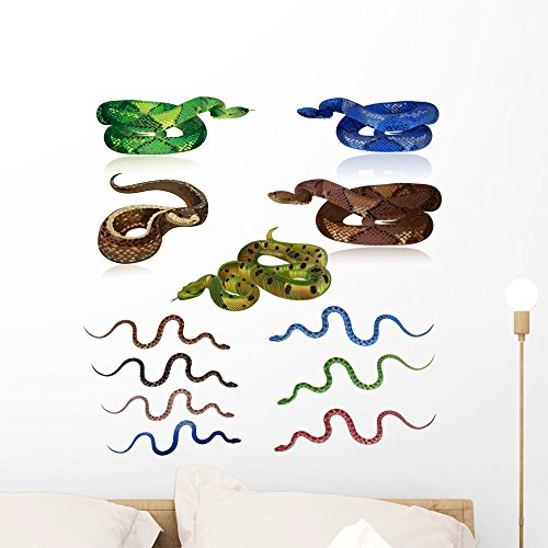 Wallmonkeys Set Pretty Realistic Snakes Wall Decal Sticker Set Individual Peel and Stick Graphics on a (24 in H x 24 in W) Sticker Sheet - Snake Decals Wall