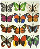 Card of 12 Butterfly Fridge Magnets