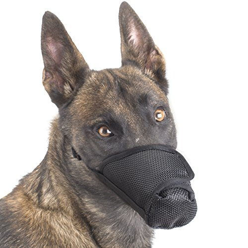 Dog Muzzle - Anti licking bitting mesh long nasal mask for postoperative surgical wound recovery (Anti-licking L)