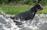 OSPet Dog Harness Dog Vest Military Service Dog Outdoor...