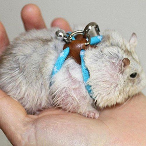 Pet Rat Mouse Leash Lead Harness Adjustable Rope Hamster Finder Bell