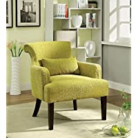 Agalva Contemporary Style Green Finish Accent Chair