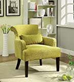 Agalva Contemporary Style Green Finish Accent Chair For Sale