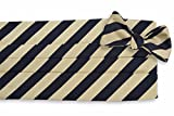 High Cotton Men's Self Tie All American Stripe Cummerbund Set - Black and Gold