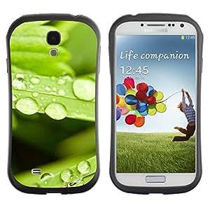 "Hypernova Slim Fit Dual Barniz Protector Caso Case Funda Para SAMSUNG Galaxy S4 IV / i9500 / i9515 / i9505G / SGH-i337 [Planta Naturaleza Forrest Flor 80""]"