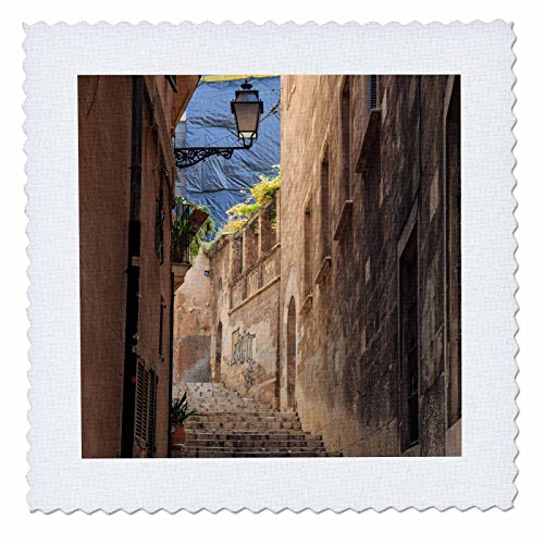 3dRose Danita Delimont - Architecture - Spain, Balearic Islands, Mallorca, Palma de Mallorca, street scenes - 14x14 inch quilt square (qs_277903_5) by 3dRose