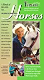 A T-Touch of M.A.G.I.C. for Horses: A Holistic Training Approach to the Body, Mind and Spirit of the horse [VHS]