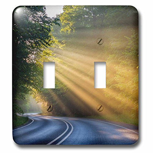 3dRose Danita Delimont - Roads - Fog rays over Pierre Stocking Drive near Empire, Michigan, USA - Light Switch Covers - double toggle switch - Michigan Electric Rays