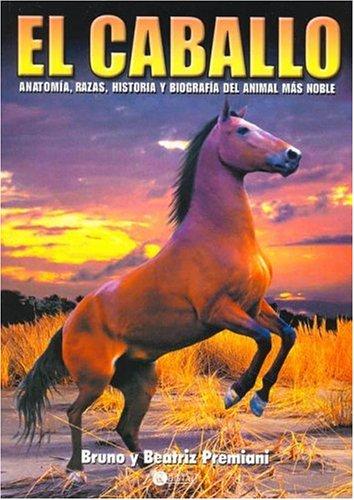 Descargar Libro El Caballo Beatriz Premiani