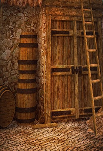 (CSFOTO 4x6ft Background for Retro Rural Stone Architecture Aged Door Photography Backdrop Countryside Scene Wine Barrel Ladder Nostalgia Grunge Straw Village Photo Studio Props Polyester Wallpaper)