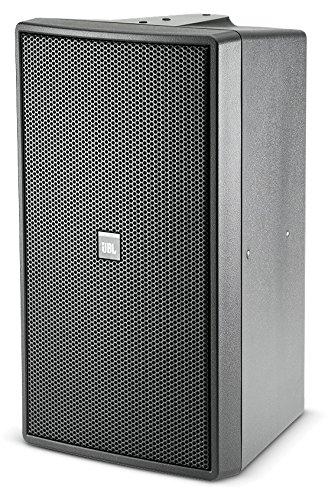 JBL Control 29AV-1 2-Way Indoor/Outdoor Speaker Black by JBL