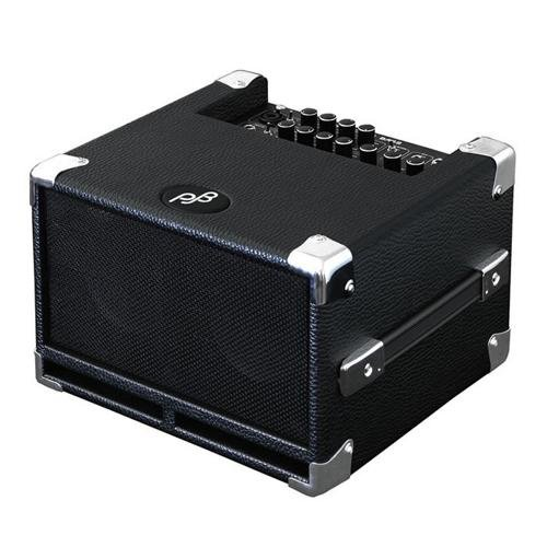 Phil Jones Bass Bass Cub BG-100 100-Watt 2x5