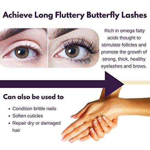 2e3ef0623eb Papillon Organic Eyelash Growth Serum with Castor, Coconut & - Import It All