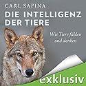 Die Intelligenz der Tiere: Wie Tiere fühlen und denken Hörbuch von Carl Safina Gesprochen von: Rolf Berg