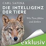 Die Intelligenz der Tiere: Wie Tiere fühlen und denken | Carl Safina