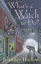 What's a Witch to Do? (Midnight Magic Mystery) (Midnight Magic Mysteries)