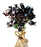 Artificial Blueberry Fruit For Decorating House or Office, Black(25 cm)
