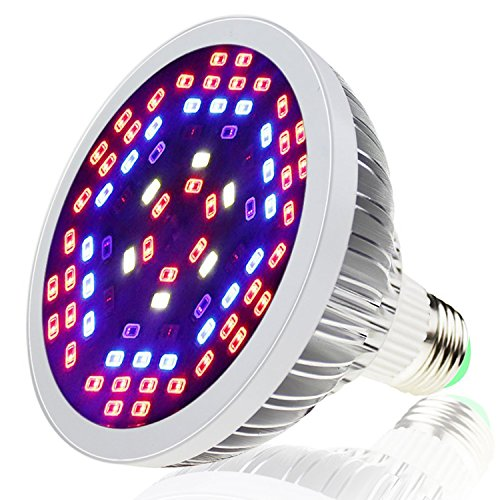 light bulb full spectrum - 7