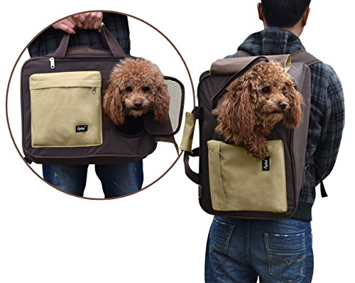 Multiple Carrier Airline Approved Backpack