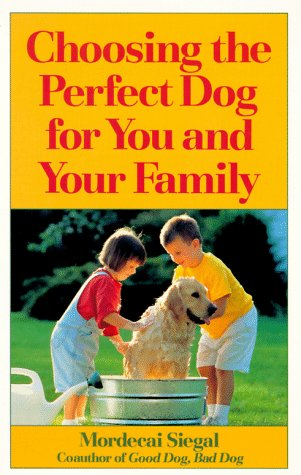 Choosing the Perfect Dog for You and Your Family