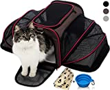 Petyella Cat Carrier Pet Carrier for Small Dogs and Cats Expandable Soft Sided Crate for Pet - Airline Approved Medium Kennel Travel Bag - 2.8 lbs Dog Carriers with Bonus Blanket and Bowl - Dark Brown