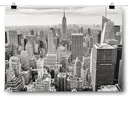 Inspired Posters Black & White Birds Eye View New York City Skyline Poster