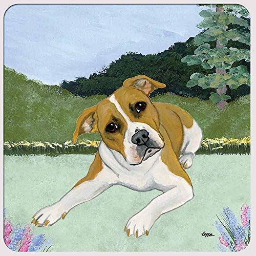 Zeppa Studios Pitbull Coasters - Set of 4
