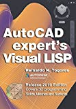 AutoCAD Expert's Visual LISP: Release 2019 Edition.