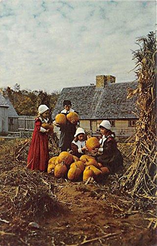 Children in Pilgrim costume portray the gathering of the Thanksgiving harvest Pilgrim Village o fPlimoth Plantation Plymouth Massachusetts Postcard