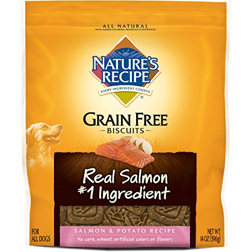 Big Heart Pet Biscuit Nature's Recipe Grain-Free Salmon/Pot, 14 oz