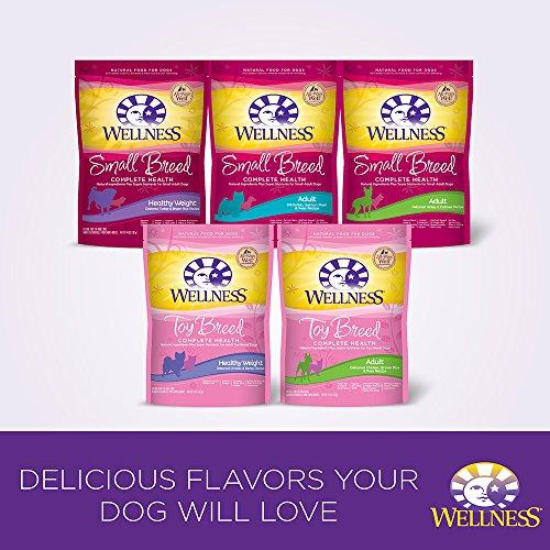 Wellness Healthy Weight Dog Food Amazon