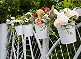 Dahey 8 Pcs Hanging Flower Pots Metal Iron Bucket