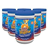 6 Pack Beyond Tangy Tangerine Youngevity Multivitamin 420g Canisters (Ships Worldwide) by Youngevity