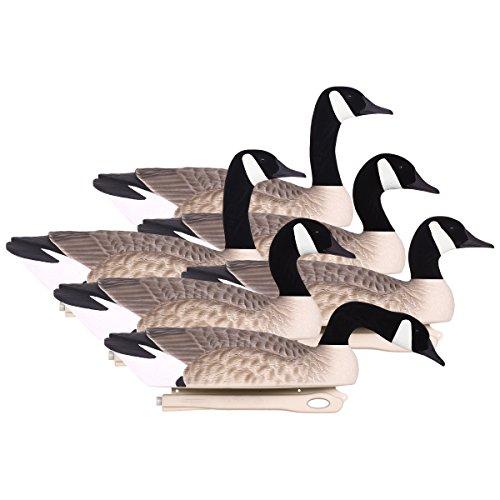 Series Canada Goose Decoy - Hard Core Brands Pro Series Canada Goose Touchdown Floater Decoys, 6 Piece