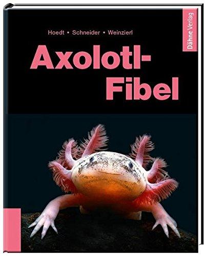 Axolotl-Fibel