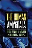 img - for The Human Amygdala book / textbook / text book