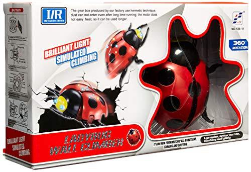 Reimagine Club Ladybug Wall Climber Remote Control Stunt Toy for Adults, Kids, Boys or Girls ()