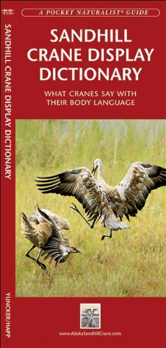 By George Happ Sandhill Crane Display Dictionary: What Cranes Say With Their Body Language (Pocket Naturalist Guide (Second Edition) pdf